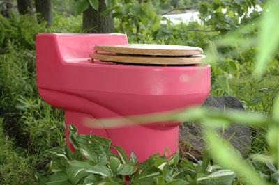 pinktoilet.jpg
