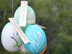 Botanical Eggs   KitchAnn Style