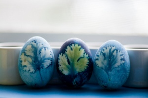 Botanical Eggs | Kitchann Style