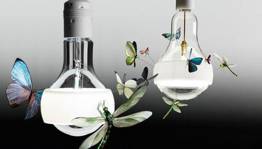 JB Schmetterling Pendant Light   KitchAnn style