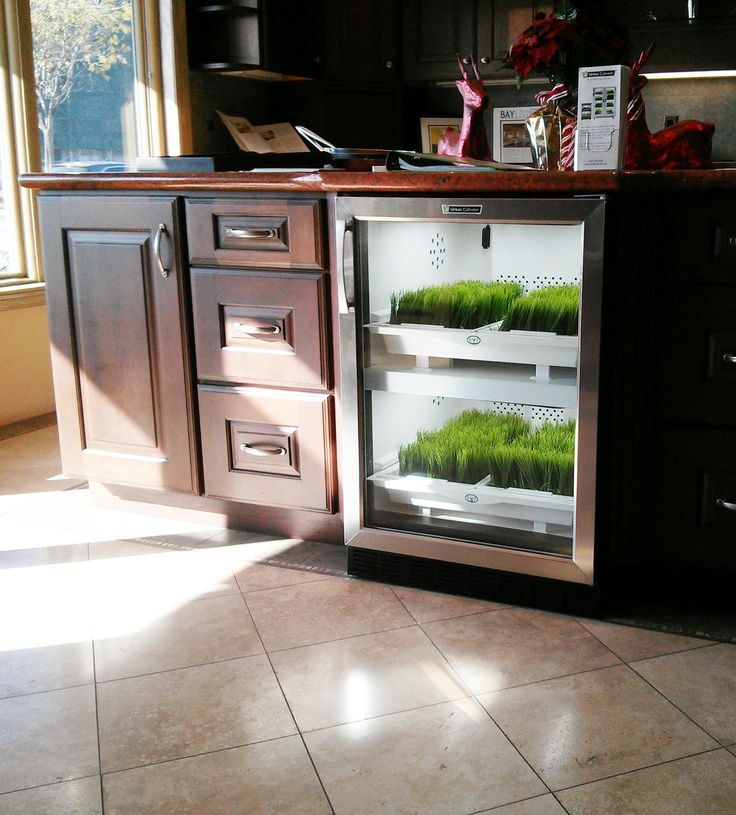 Grow at Home – Kitchen Studio of Naples, Inc.