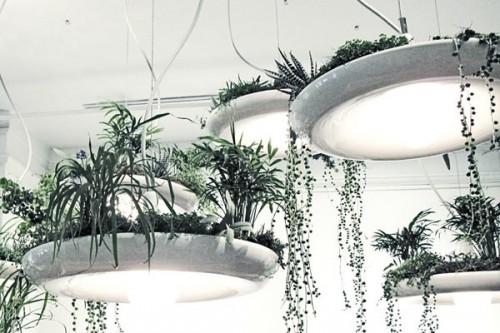 Babylon suspended light   Kitchen Studio of Naples