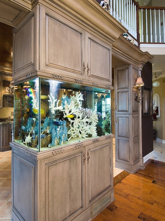 Aquariums Then And Now Kitchen Studio Of Naples Inc