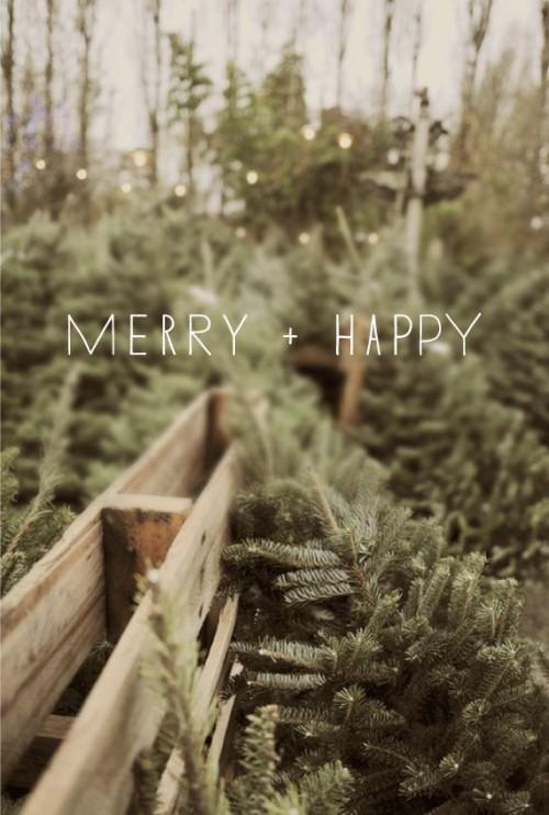 Merry Christmas, SWFL