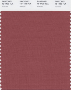 Pantone Color of the Year 2015 Marsala | KitchAnn Style
