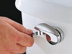Dual Flush| KitchAnn Style