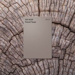 Sherwin-Williams Color of the Year 2017: Poised Taupe