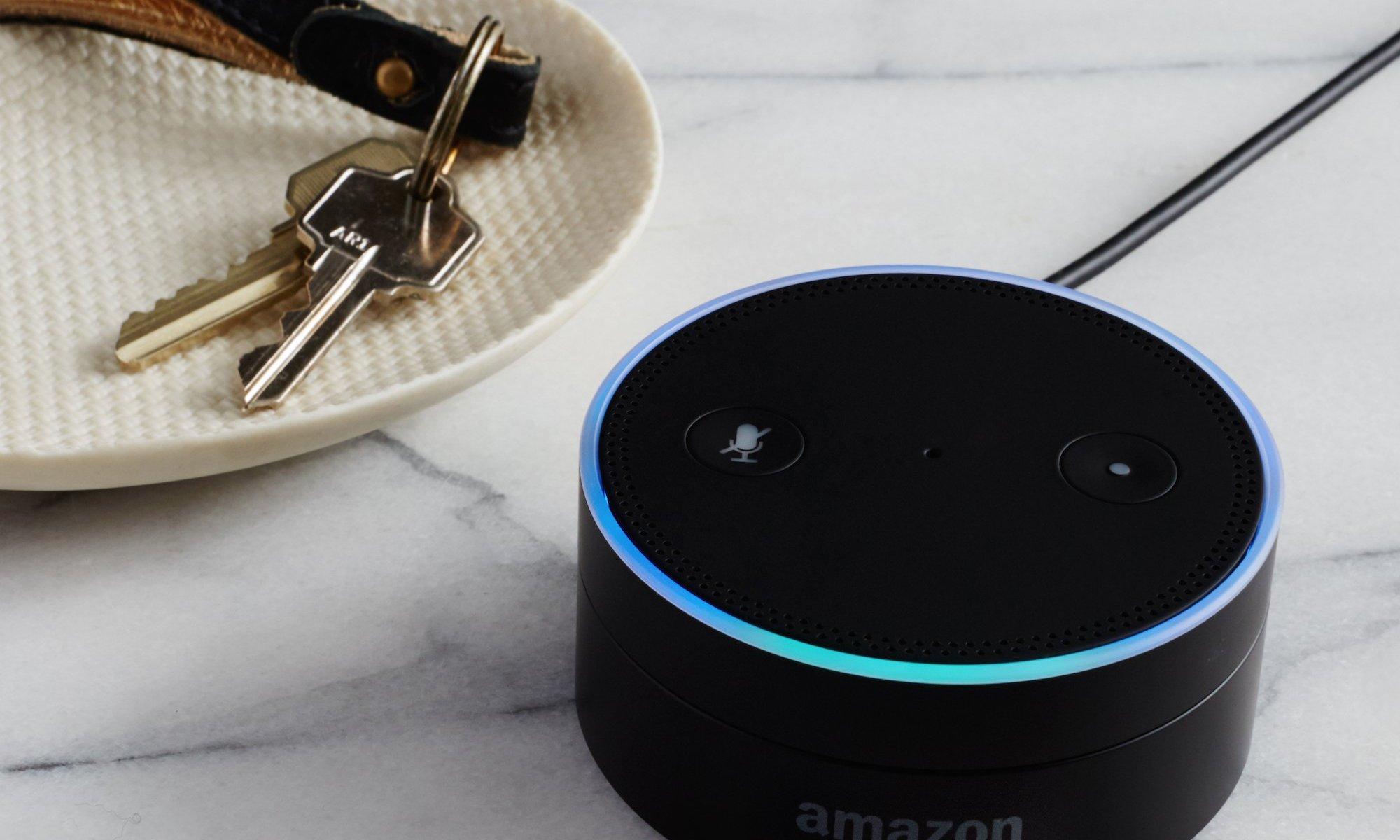GE Geneva Amazon Dot | KitchAnn Style